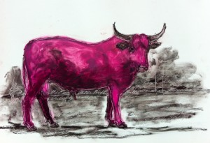 The Pink Blue Bull