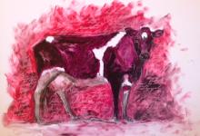 The Judgemental Cow